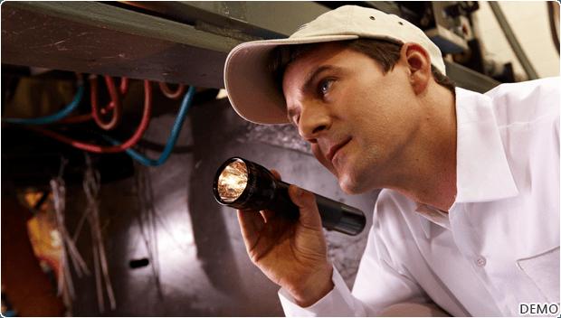 slide3_Pest Inspection